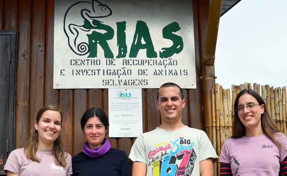 Godinu dana u Portugalu uz Europsku volontersku službu
