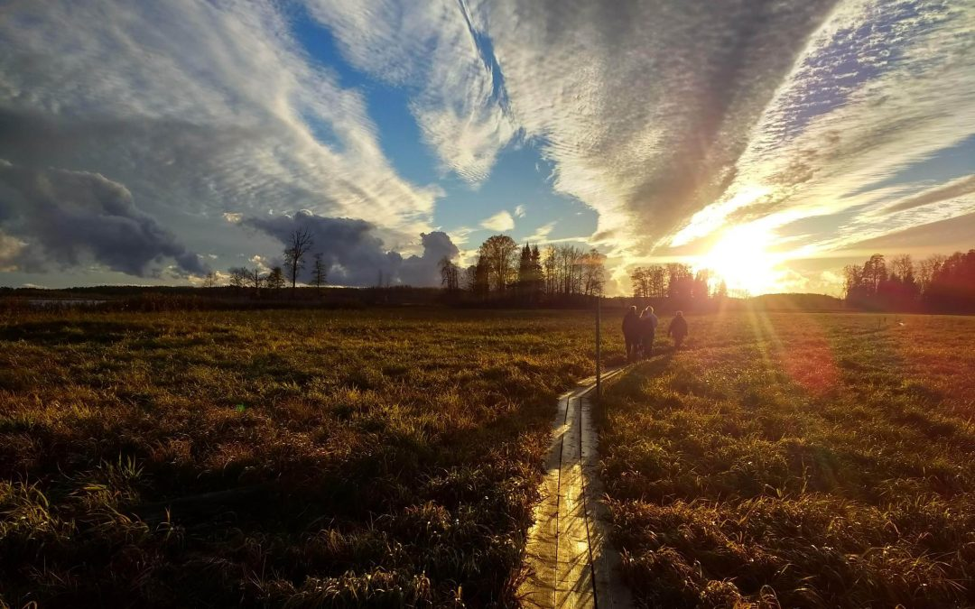 Prilika za volontiranje u Estoniji
