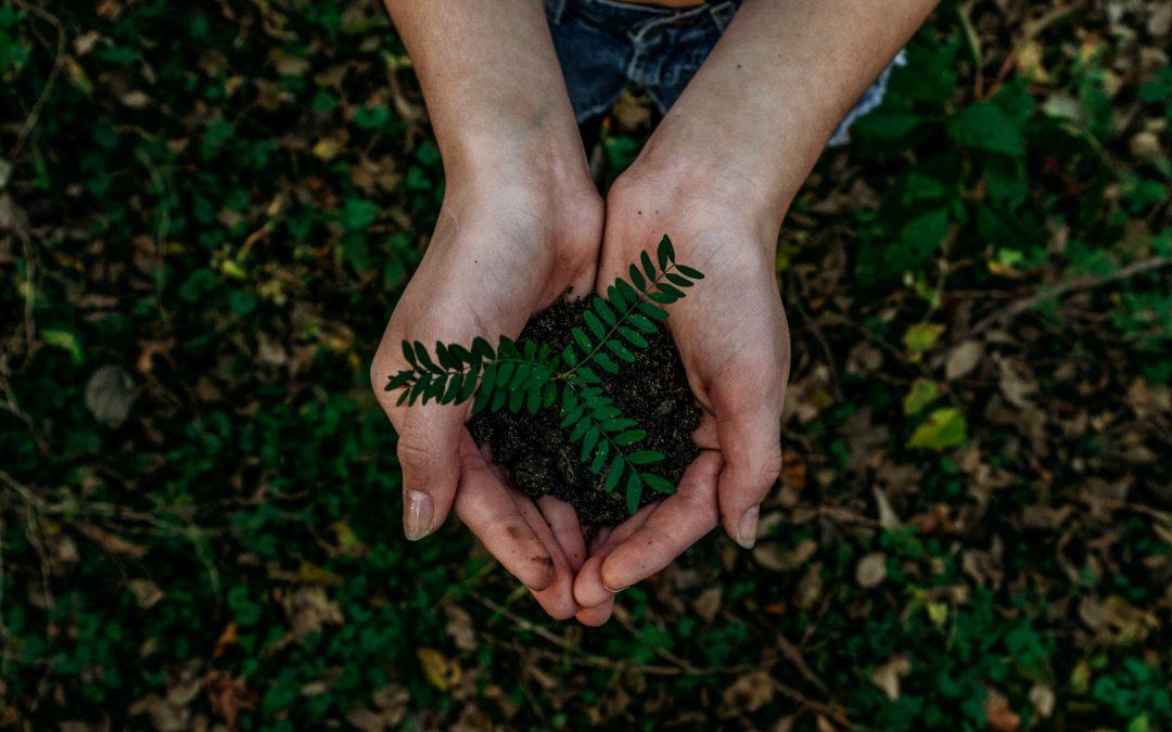 Obilježava se Europski dan održivih zajednica