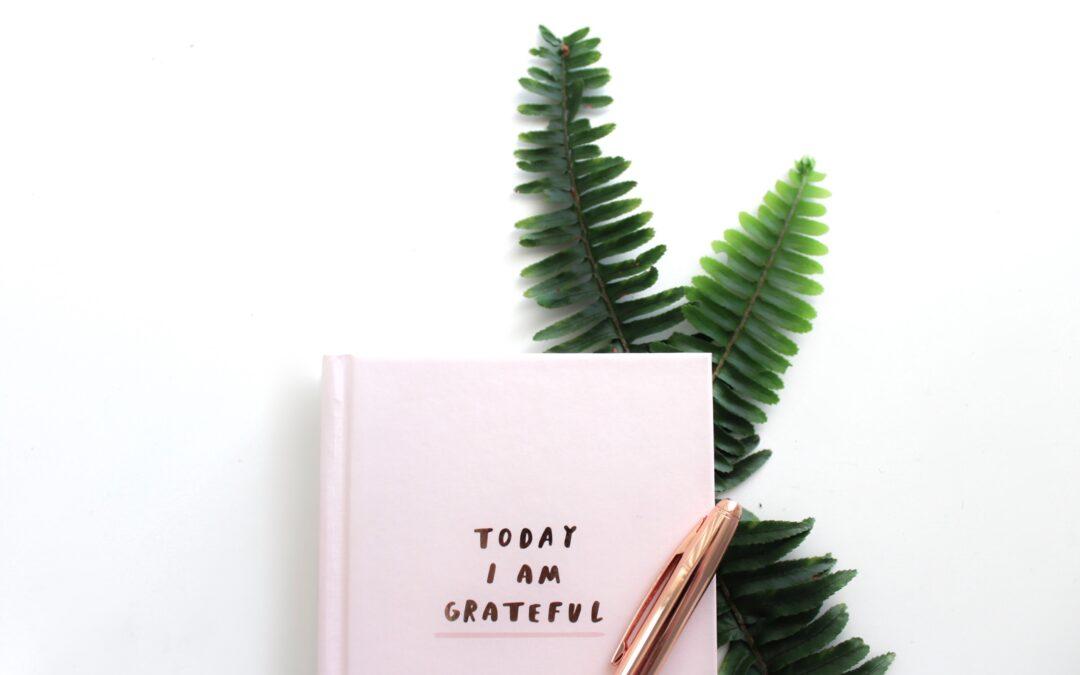 Isprobaj Dnevnik zahvalnosti – besplatni ebook za osobni razvoj