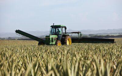Poticajima za umirovljenje starijih farmera do zelenije poljoprivrede
