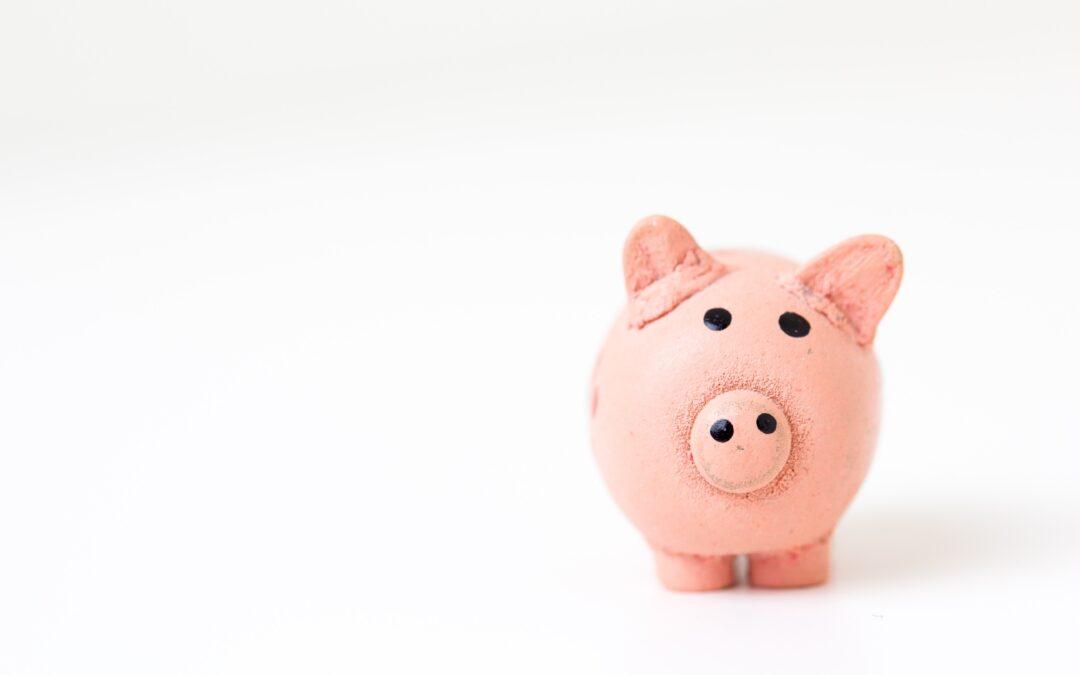 Studentski zbor Sveučilišta u Puli dodjeljuje financijska sredstva