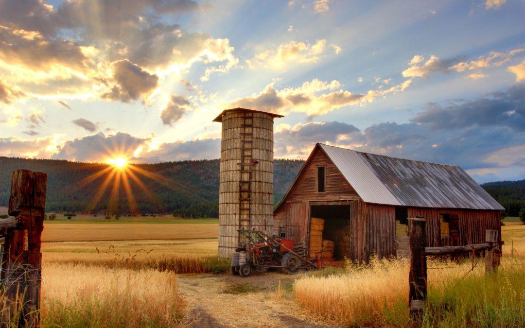 Stažiraj na farmi u Norveškoj