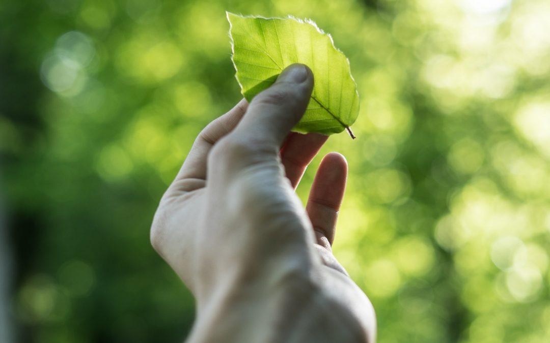 Objavljen europski izvještaj o održivom razvoju za 2019.