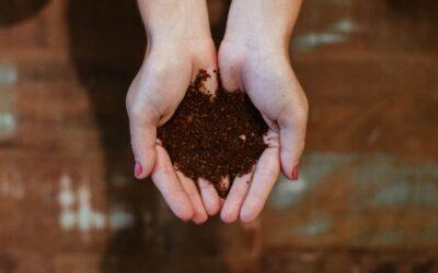 Prijavi se na online radionicu kompostiranja